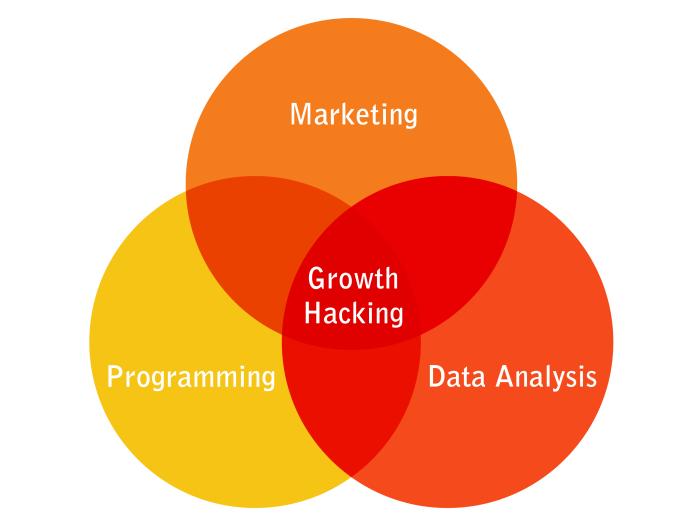 10 tácticas GROWTH HACKING para Marketing Digital 2019 – ASÍ ES LA VIDA